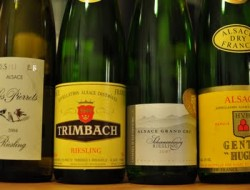 alsace_riesling