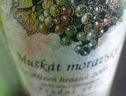 muskat_moravsky_vino