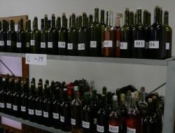 vystava-vin