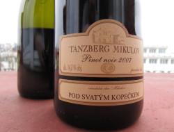 Tanzberg-Pinot