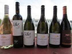 slovinska-vina