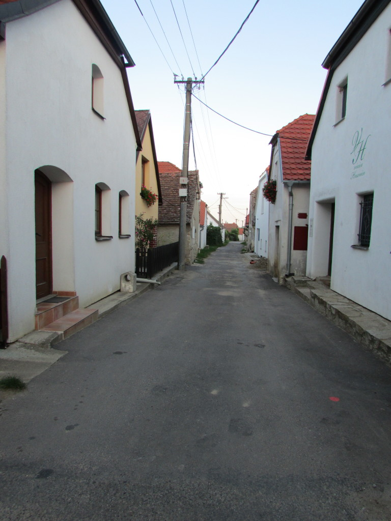IMG_3183