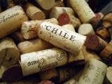 Como-o-vinho-chileno-ficou-famoso_1