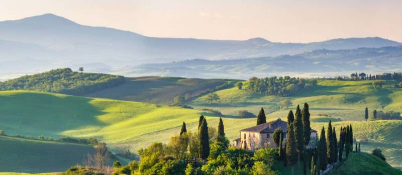tuscany-vineyard-tour-and-dinner-in-the-chianti